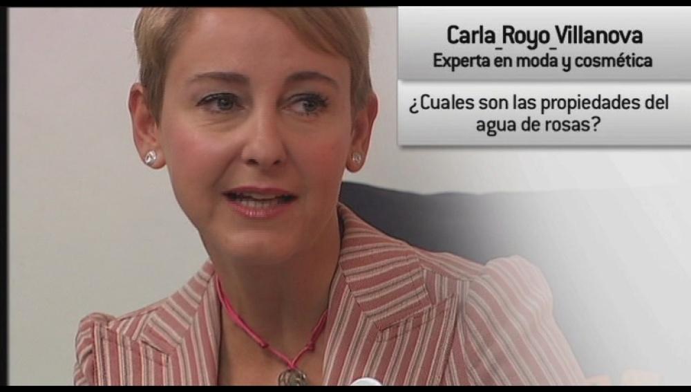 Entrevista a Carla Royo Villanova