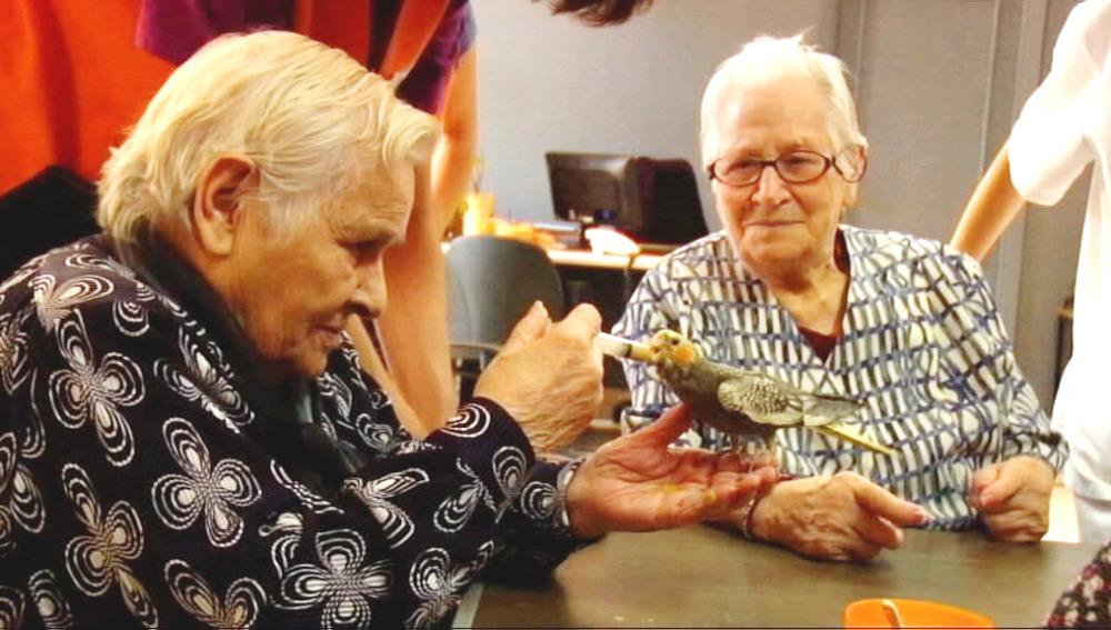Terapia para ancianos
