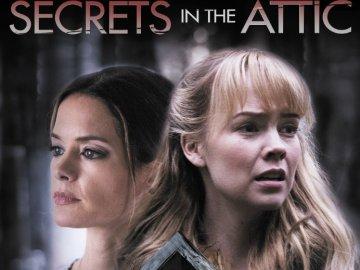 Secretos en el desván